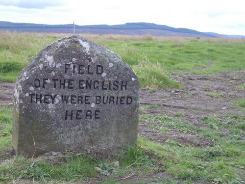 Field of the english