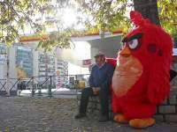 Red de Angry Bird Sell