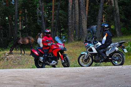 Comparativa Multistrada vs Super Tenere - Caballos trail