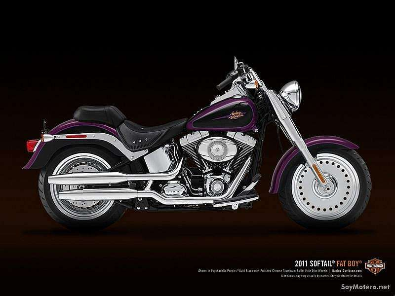 Harley-Davidson Fat Boy 2011 - Phycodelic Purple y Vivid Black